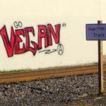 Worauf ist bei einer veganen Ernährung zu achten?
